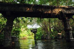 jungle_river_by_avs_avs