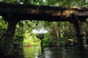 jungle_river_by_avs_avs